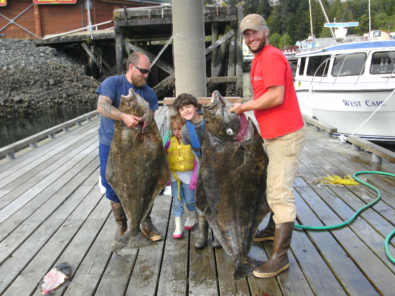 Nice bigger halibut
